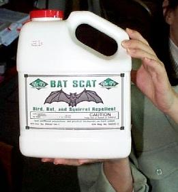 BAT SCAT