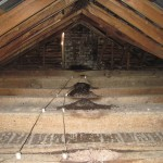 Bat infested attic has bad bat problem that needs to be cleaned out.